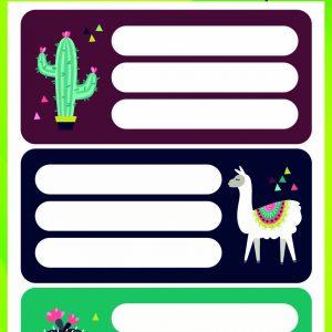 Fiesta Schools Label